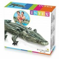 Cavalcabile Vero Alligatore Intex 57551